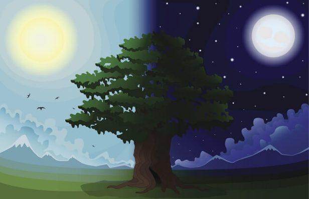 gece ve gündüz