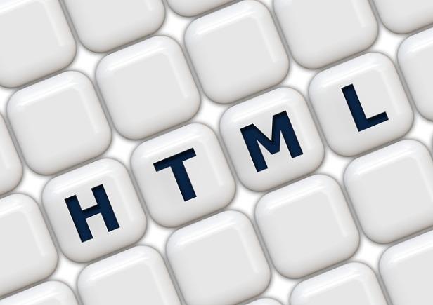 html kodlari eklemek wordpress