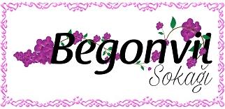 Begonvil Sokağı - Kişisel Blog