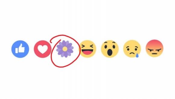 facebook mor cicek simgesi